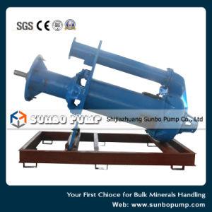 La linea di trasformazione minerale la pompa verticale SV dei residui dell'asse di rotazione dell'asta cilindrica digita