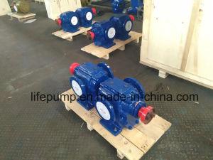 Calefacción de la bomba de aceite de engranajes Lqb