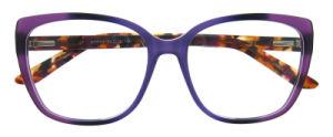 De hete Verkopende Optische Frames van het Oogglas van de Acetaat van het Ontwerp