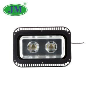 Professionelles Flut-Licht der kühler Raum-im Freien helles Leistungs-100W LED