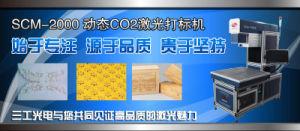 二酸化炭素レーザーのマーキング機械を置くCCD