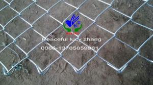 Zink-überzogener Kettenlink-Zaun (ruhig)