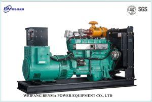 천연 가스 발전기 또는 Biogas 발전기 또는 Coke-Oven 가스를 포함하여 가스 발전기