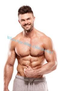 Venta caliente TB-500 para el crecimiento muscular