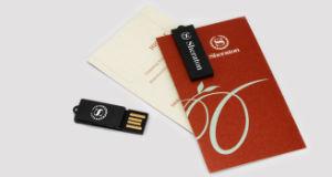 Paperclip Custom Mini USB Flash Drive met Logo (alp-075U)
