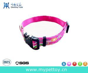 Guinzaglio di nylon di vendita caldo del cane (QD-C153)