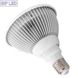 24W E27 LED si sviluppano chiari per gli ortaggi da frutto della pianta