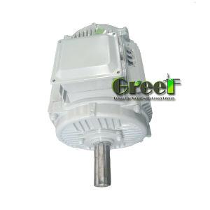 600kw 3 PHASE AC générateur à aimant permanent pour l'hydroélectricité et l'utilisation du vent