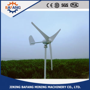 Wind-Turbine für Haupt48v