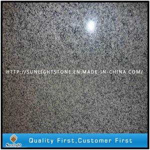 De goedkope Natuurlijke Opgepoetste G640 Grijze Tegels van de Vloer van de Steen van het Graniet