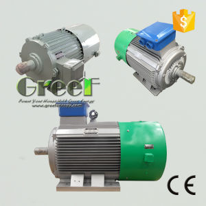 Generator de van certificatie Ce Permanente van de Magneet met 3 Synchrone Fase AC