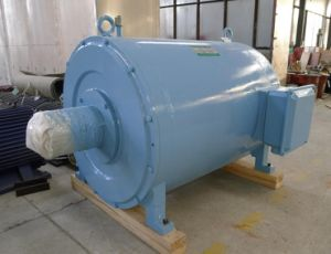 Grande generatore a magnete permanente per la centrale elettrica