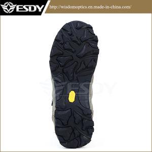 Bottes d'assaut tactique militaire de l'armée Sports des chaussures de randonnée
