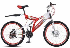 24의 가득 차있는 Suspention 자전거 18 속도 자전거