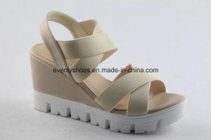 La conception de filtre en coin Femmes chaussures sexy avec élastique Upper