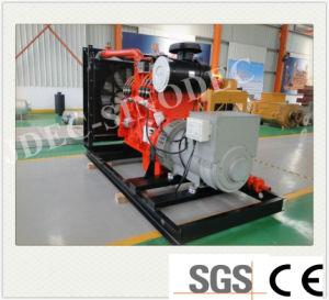 Piccolo generatore della biomassa di potenza di motore