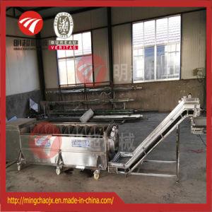 De automatische Wasmachine van de Gember van de Machine van de Was en van de Schil van de Aardappel