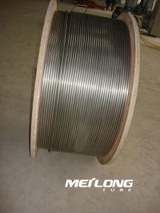 S31603 Downhole het Haarvat van het Roestvrij staal