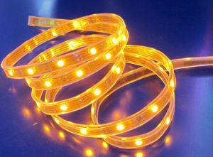 Luce di striscia del LED (5050SMD)