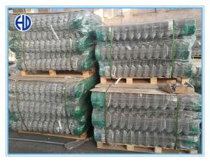 Cercado de China con revestimiento de plástico