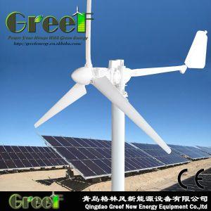 1kw sistema generador eólico de eje horizontal con el controlador y un inversor