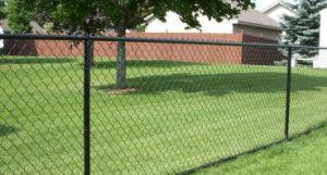 パネルか粉の上塗を施してある塀のパネルを囲うPanel/PVCによって塗られる溶接された金網を囲う高い安全性の庭
