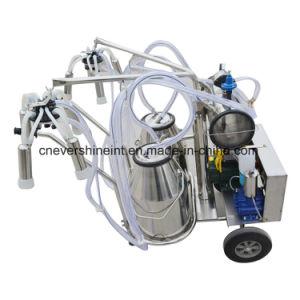Oil-Free真空ポンプの搾り出す機械牛直接二重タンク工場