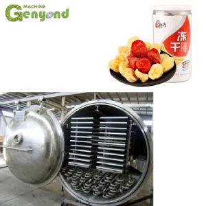 Vakuumflugleitanlage-einfrierender Trockner-gefriertrocknete AnanasJackfruitdurian-Chips, die Maschine herstellen