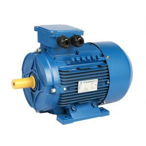 5.5kw-Ie2シリーズ3段階の非同期モーター(Tefc-IP55、IECの標準)