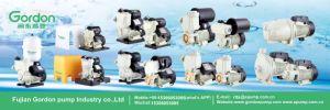 Dk 2CV Monofásico de autocebado Bomba de presión agrícolas centrífuga