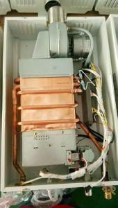 calentador de agua de gas de escape forzada con temperatura constante.