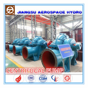 Motor ElectricのHts800-30/Single-Stage Double Suction Centrifugal Water Pump