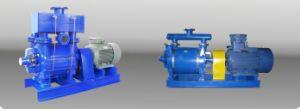 2be1253 Series Water (液体) - Ring Vacuum Pump