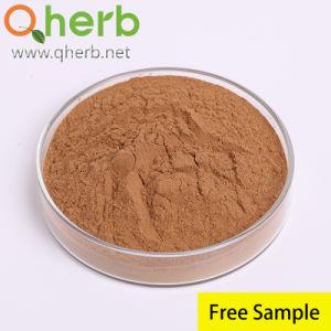 Epimedium Brevicornum Horny Goat Weed Icariin extracto en polvo extracto de hierbas