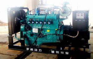Natur-Gas-Generator