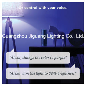 На заводе прямой продажи качество 9W WiFi LED Smart лампу
