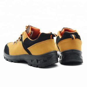 Puntera Sb pas S1 de calzado de trabajo Calzado de seguridad