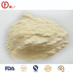 Boa qualidade de alho desidratado em pó