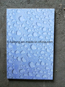 tegels van de Muur van de Badkamers van 200X300mm de Cearmic Verglaasde Inkjet
