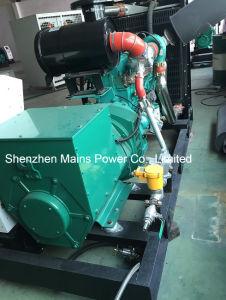 generatore del gas naturale di 325kVA 260kw Cummins (350kVA standby 280KW)