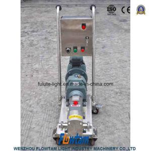 Vorsprung-Rotor-Pumpe des Edelstahl-drei