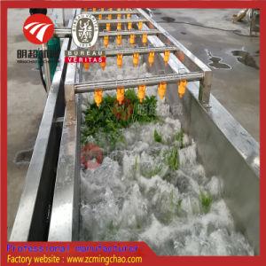 /Fruits Légumes faite de la ligne de production de nettoyage SUS304
