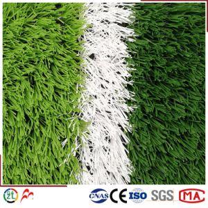 Kunstmatig Gras, Voetbal, Voetbal