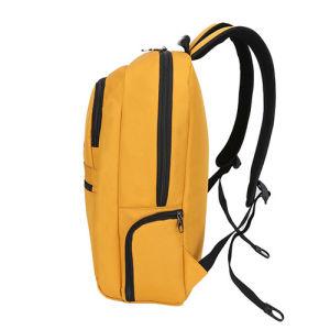 Spitzenverkaufs-neuer Ankunfts-Schule-Computer-Laptop-Rucksack für Jugendlichen