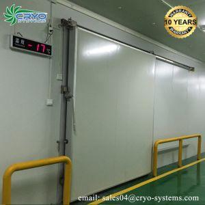 20 % de l'électricité de l'enregistrement Fruits 8X8 de marche dans le refroidisseur