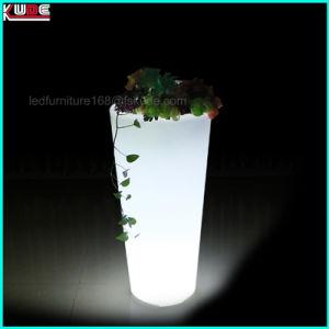 verlichte van de hoofd pot van de bloem van de tuin lichte omhoog openluchtplanters