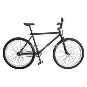 단일 속도 수정 기어 자전거