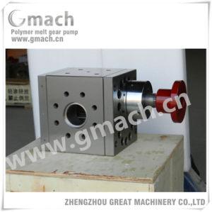 Pompa ad alta pressione della fusione per l'espulsore di strato di plastica