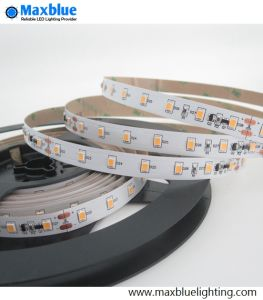 Indicatore luminoso di striscia costante 70LEDs/M della corrente LED di DC24V 2835