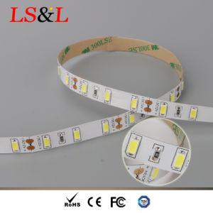 3528SMD impermeabilizzano l'indicatore luminoso della corda della striscia di 120LEDs/M LED